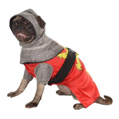 Mighty Knight Costume
