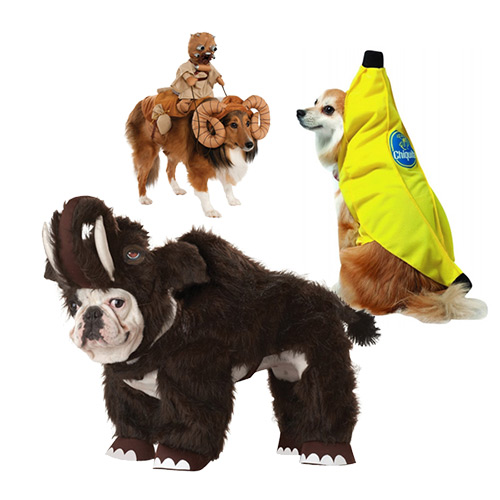 Top 10 Dog Costumes