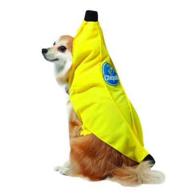 Officially licensed Chiquita Banana Costume