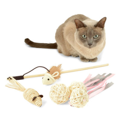Cat Toys Variety Pack