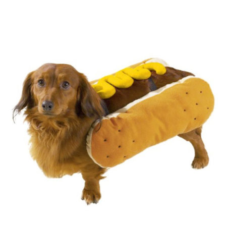 Hot Diggity Dog Costume