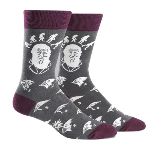 Charles Darwin Evolution Crew Socks