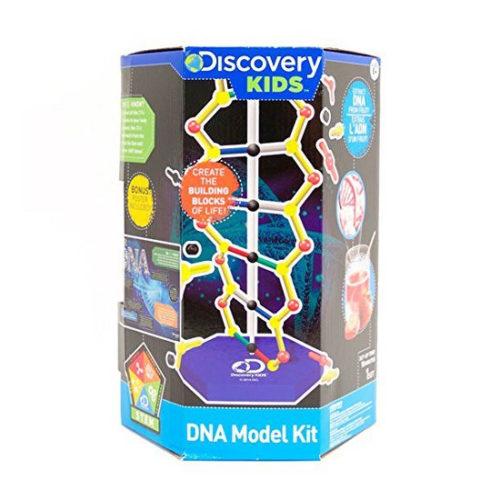Discovery Kids DNA Model Kit
